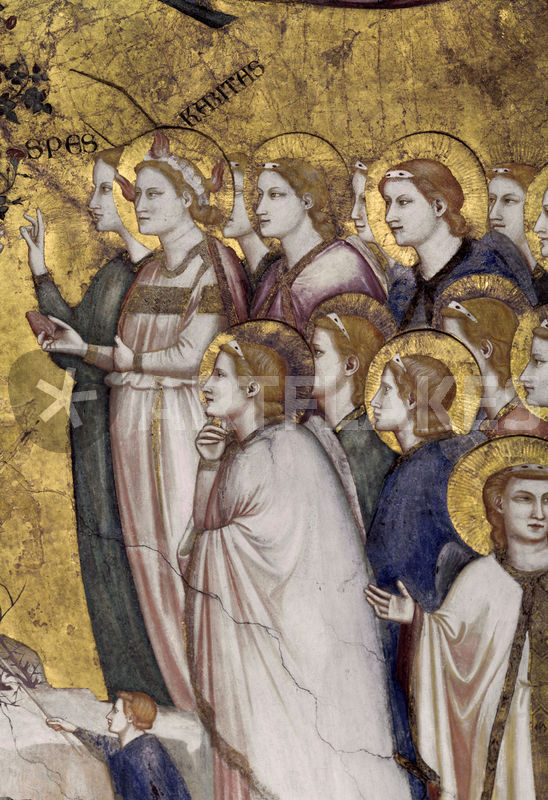 Giotto, Franziskus vermaehlt sich Armut Picture art