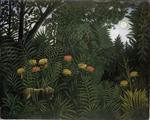 Rousseau,H./ Exotische Landschaft/ 1907 von AKG  Images