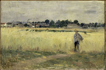 B.Morisot, In den Kornfeldern by AKG  Images
