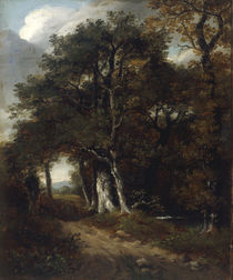 J.Constable, Waldlandschaft by AKG  Images