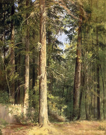I.I.Schischkin, Wald by AKG  Images