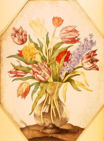 G.Garzoni, Tulpen und Hyazinthe von AKG  Images