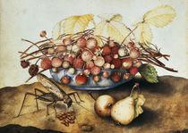 G.Garzoni, Schale mit Erdbeeren von AKG  Images