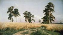 Schischkin/ Roggenfeld/ 1878 von AKG  Images