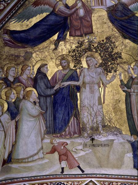 Giotto, Franziskus vermaehlt sich Armut Bild als Poster