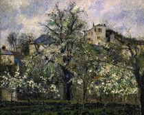 C.Pissarro, Gemuesegarten ... Pontoise by AKG  Images