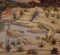 B.Gozzoli, Landschaft mit Voegeln von AKG  Images