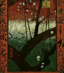 V.v.Gogh, Bluehender Pflaumenbaum von AKG  Images