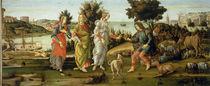 S.Botticelli, Urteil des Paris by AKG  Images