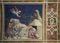 Giotto, Traum des Joachim / Padua by AKG  Images