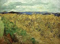V.v.Gogh, Feld, mit Kornblumen by AKG  Images