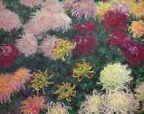 C.Monet, Chrysanthemenbeet von AKG  Images