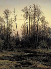 I.I.Schischkin, Wald im Fruehling by AKG  Images