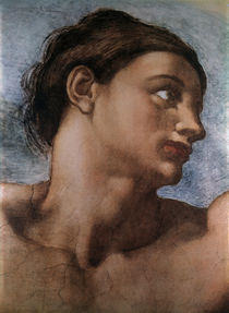 Michelangelo, Erschaffung Adams, Ausschn von AKG  Images