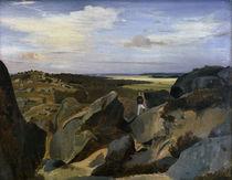 C.Corot, Artiste passant dans un chaos.. von AKG  Images