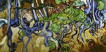 V.v.Gogh, Baumwurzeln und Baumstaemme by AKG  Images