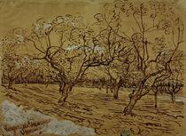 V.van Gogh, Provenzalischer Obstgarten by AKG  Images