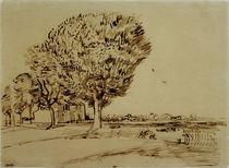 V.v.Gogh, Landschaft mit Haus u.Baeumen von AKG  Images