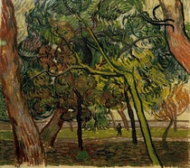 V.van Gogh, Studie mit Fichten im Herbst von AKG  Images