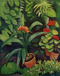 A.Macke, Blumen im Garten von AKG  Images