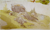 C.D.Friedrich, Wiesenstueck Riesengebirge by AKG  Images
