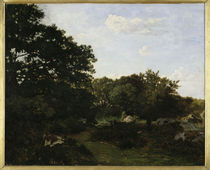 F.Bazille, Waldrand in Fontainebleau von AKG  Images