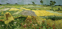 V.v.Gogh, Ebene von Auvers (Felder) by AKG  Images
