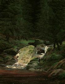 C.D.Friedrich, Wasserfall / um 1828 von AKG  Images