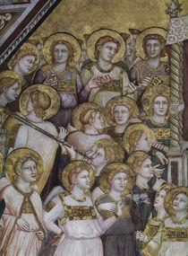 Giotto, Engel aus Verherrlichung Franz von AKG  Images