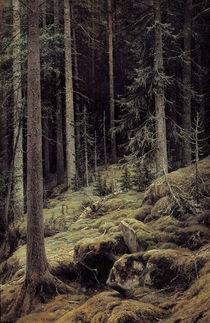 I.I.Schischkin, Waldesdunkel von AKG  Images