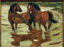 F.Marc, Zwei Pferde in der Schwemme von AKG  Images