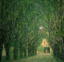 G.Klimt, Allee im Park von Schloss Kammer von AKG  Images