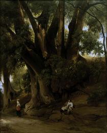 A.Feuerbach, Italienische Baumlandschaft by AKG  Images