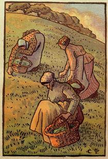 C.Pissarro, Kraeuter suchende Frauen von AKG  Images