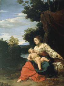 S.Vouet, Madonna mit dem Weidenkorb von AKG  Images