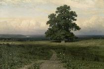 Schischkin/Es stand auf oeder Heide..1883 von AKG  Images