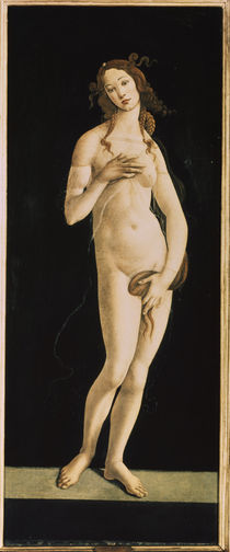 S.Botticelli, Venus by AKG  Images