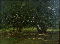 C.Monet, Wald von Fontainebleau von AKG  Images