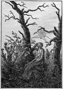 C.D.Friedrich, Frau mit Spinnennetz von AKG  Images