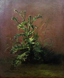 Edouard Manet, Die Distel von AKG  Images