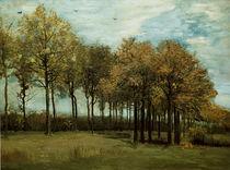 v.Gogh, Herbstlandschaft von AKG  Images