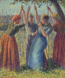 C.Pissarro, Stangen setzende Baeuerinnen by AKG  Images