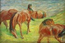 F.Marc, Weidende Pferde I by AKG  Images