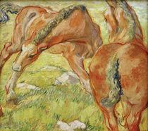 Franz Marc, Mutterpferd und Fohlen by AKG  Images
