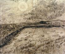 V.van Gogh, Felder und Oelbaeume by AKG  Images