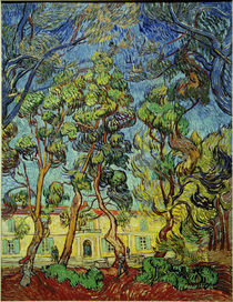 V.van Gogh, Heilanstalt in Saint by AKG  Images