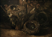 v.Gogh, Vogelnester von AKG  Images