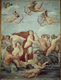 Raffael, Triumph der Galatea von AKG  Images
