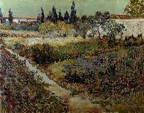 V.van Gogh, Bluehender Garten mit Pfad von AKG  Images