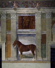 Mantua, Palazzo del Te, Sala dei Cavalli by AKG  Images